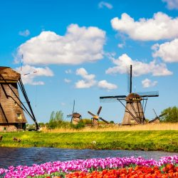 A better life in the Netherlands working as a Nurse !